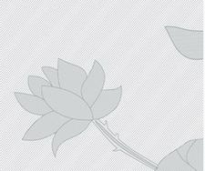 Folie bloem